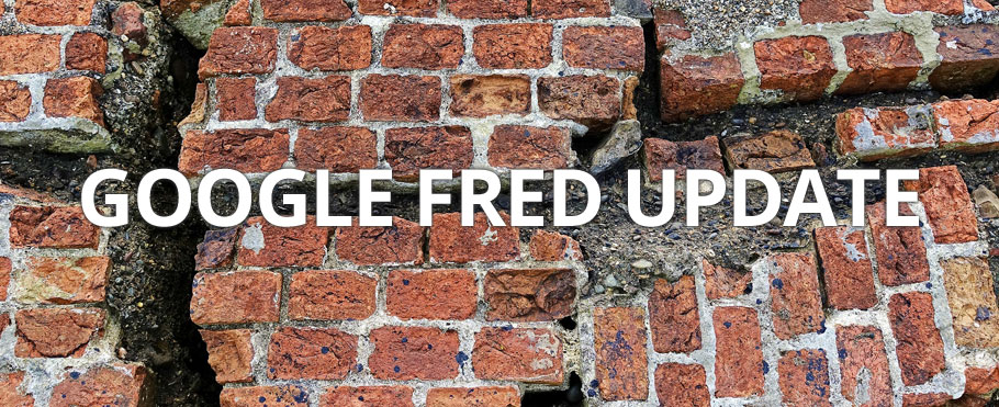 Google Fred update schade